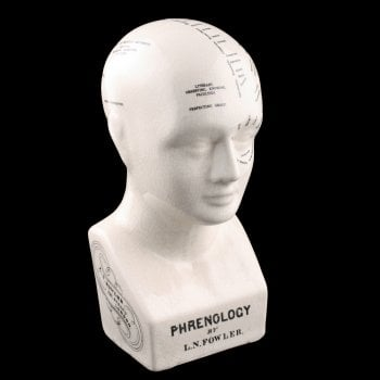 20th Century Pottery Phrenology Head