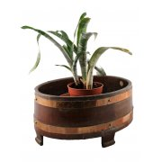 Edwardian Oval Mahogany Planter