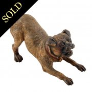 Austrian Bronze 'Pug' Dog