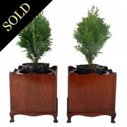 Pair of Art Nouveau Mahogany Planters