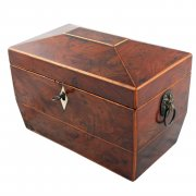 Regency Yew Wood Tea Caddy
